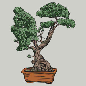 thinking-bonsai